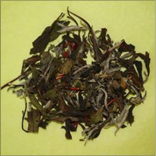 Picture of Pomegranate Magnolia Organic